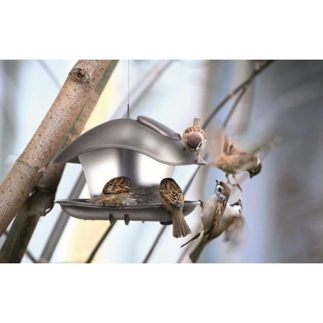 Karmnik dla ptaków - BIRDYFEED SQUARE